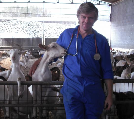 image G_Stilwell_with_goats.jpg (1.7MB)